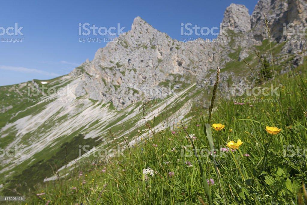 rocky mountain chain royalty-free stock photo