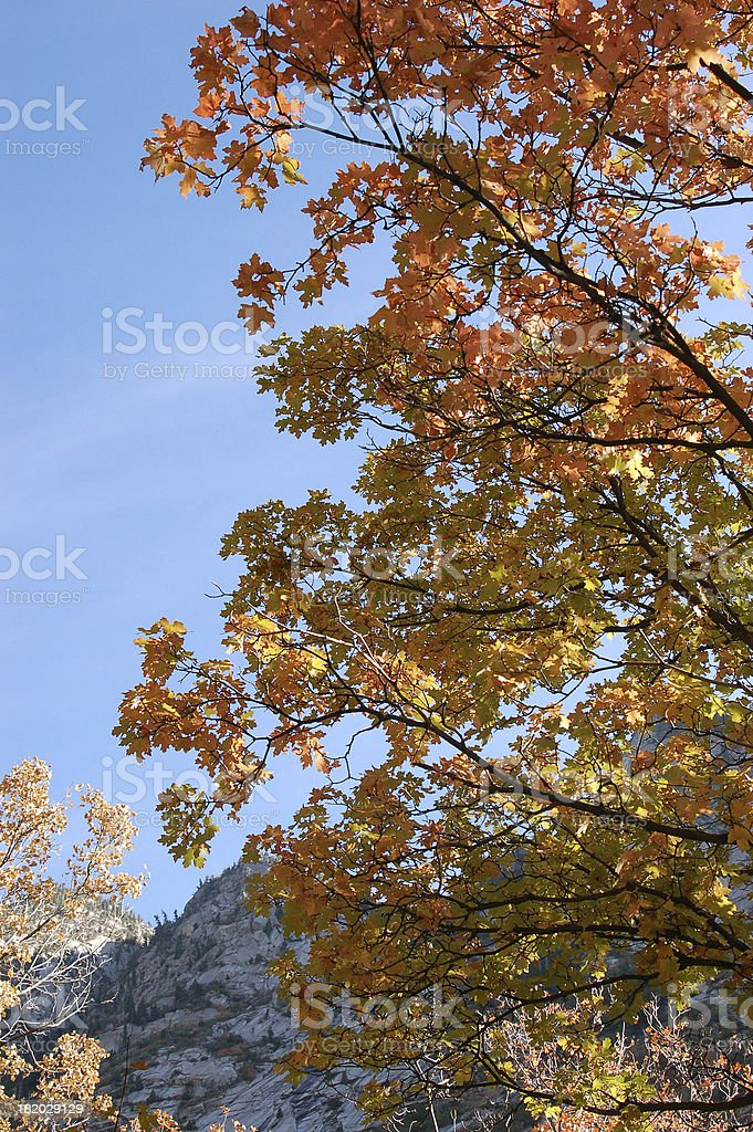 Rocky Mountain Early Autumn royalty-free stock photo