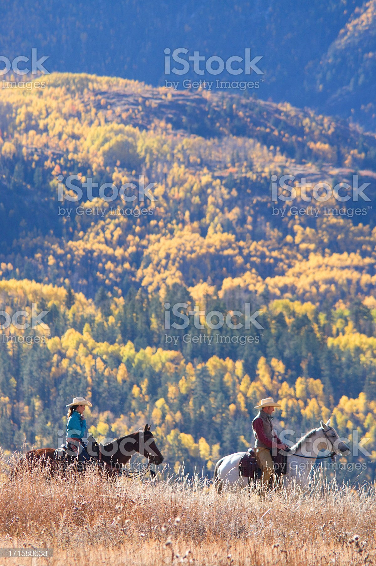 rocky mountain horseback autumn landscape royalty-free stock photo