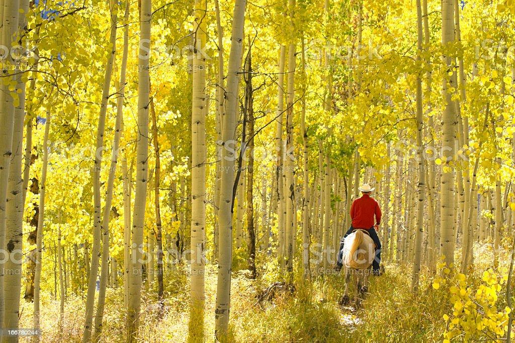 rocky mountain lifestyle royalty-free stock photo