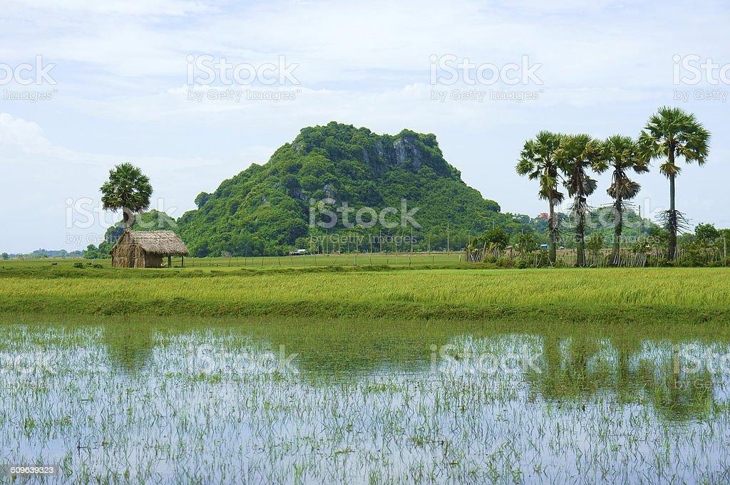 rocky mountain, Mekong Delta, Vietnam stock photo