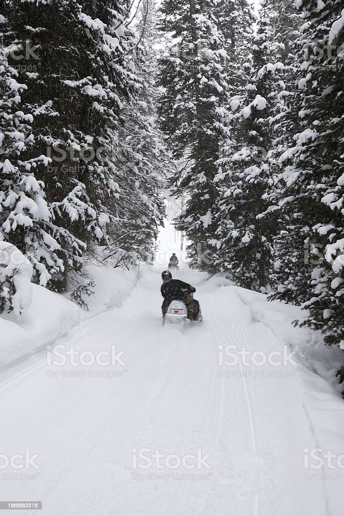 Rocky mountain snowmobiling. stock photo