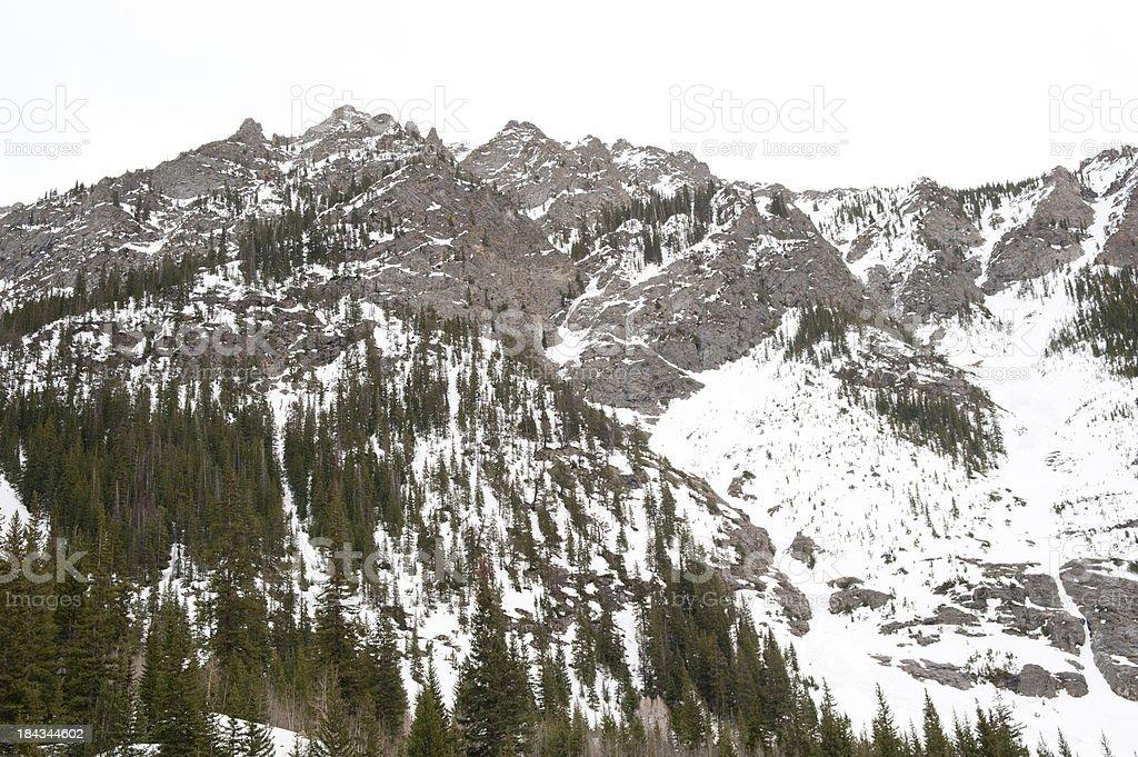 Rocky Mountain Spring stock photo