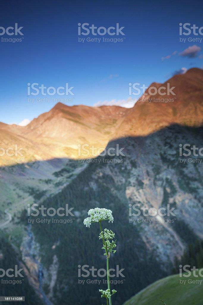 rocky mountain sunset landscape royalty-free stock photo