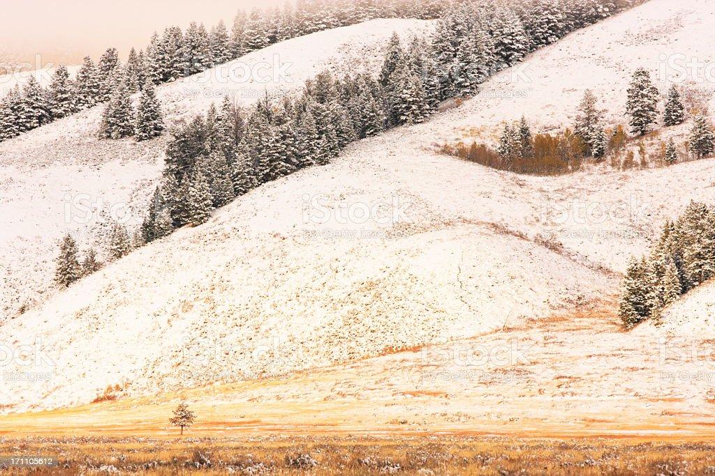 Rocky Mountain Valley Wilderness Fog Snow royalty-free stock photo