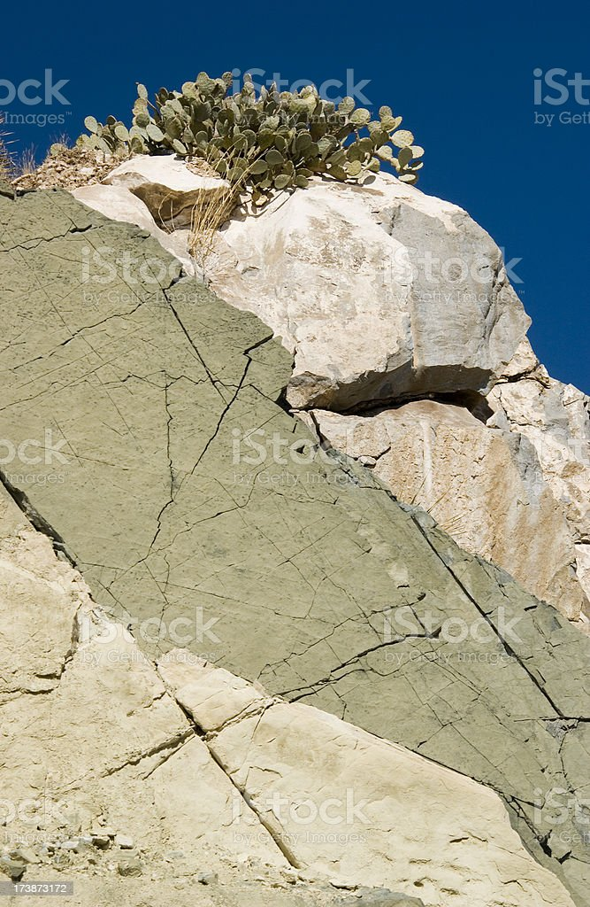Rocky Mountain with Cactus stock photo