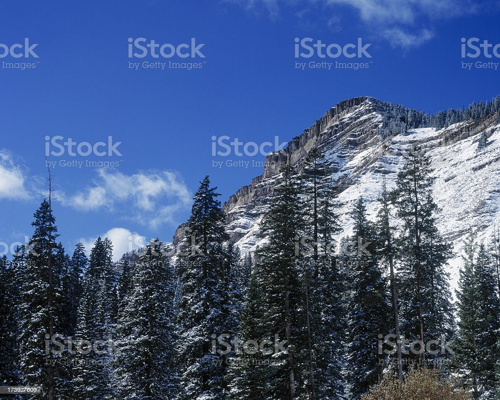 Rocky Mountains Covered in snow during winter royalty-free stock photo