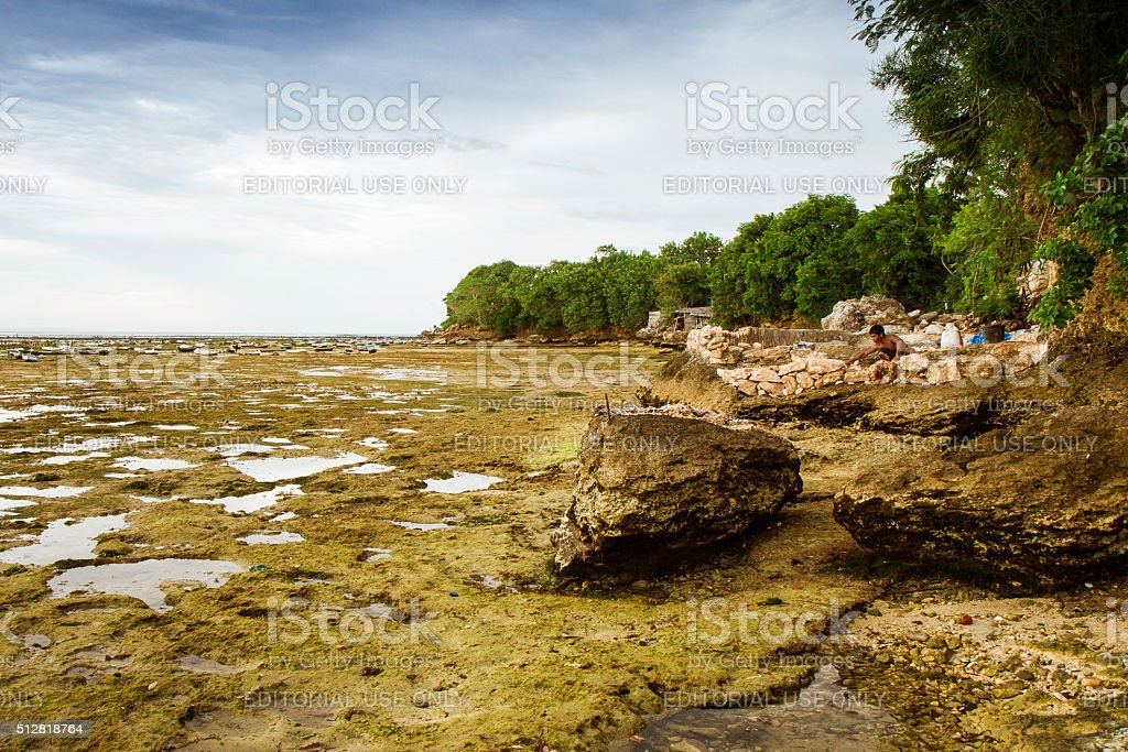 Rocky Seabed stock photo