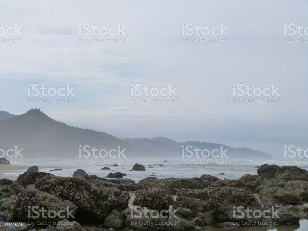 Rocky shoreline with mountain range stock photo