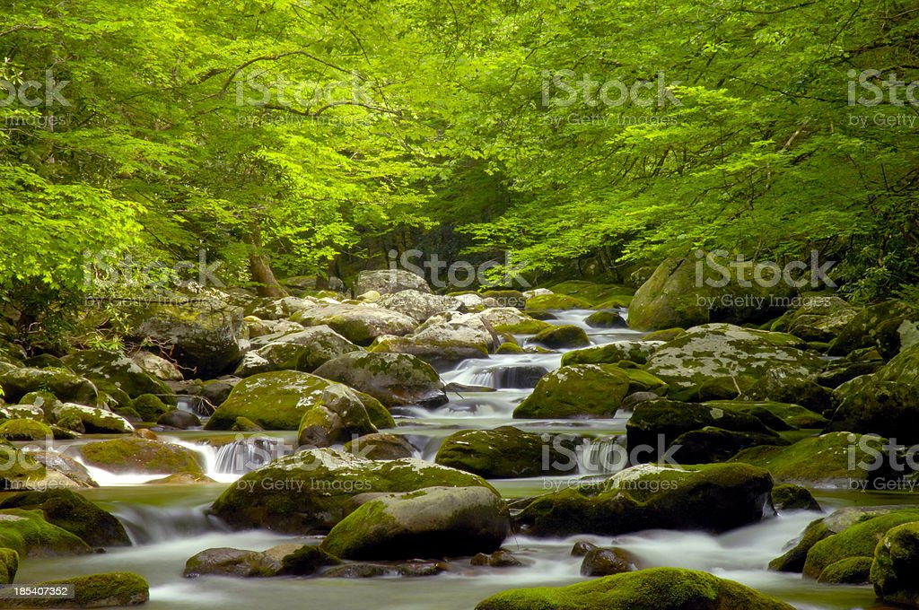Rocky Stream in Great Smoky Mountains Tremont Area stock photo