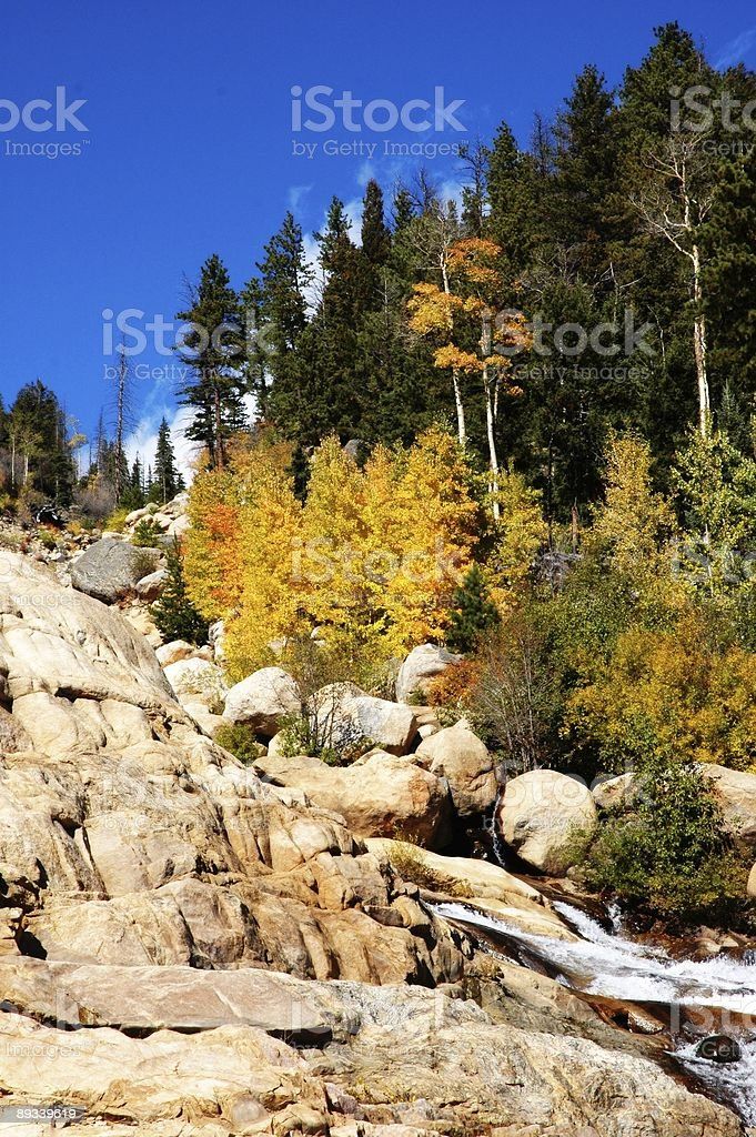 Rocky Waterflow with Trees stock photo