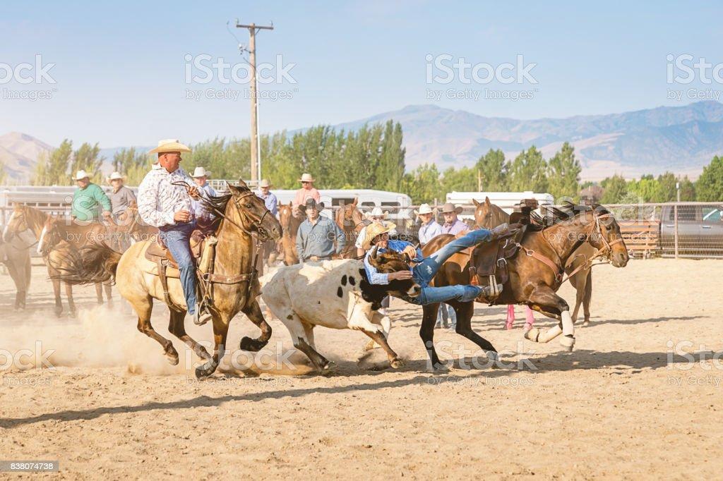Rodeo Action Cowboys Bulldogging Steer Wrestling USA stock photo