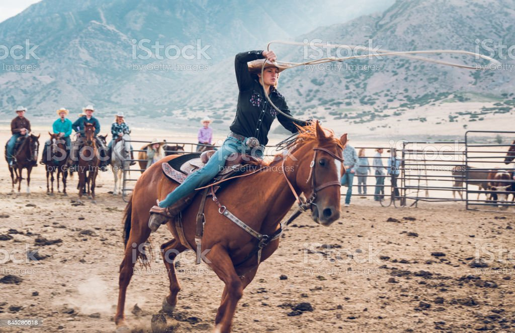 Rodeo Action Cowgirl Chasing Bull with Lasso in Arena stock photo
