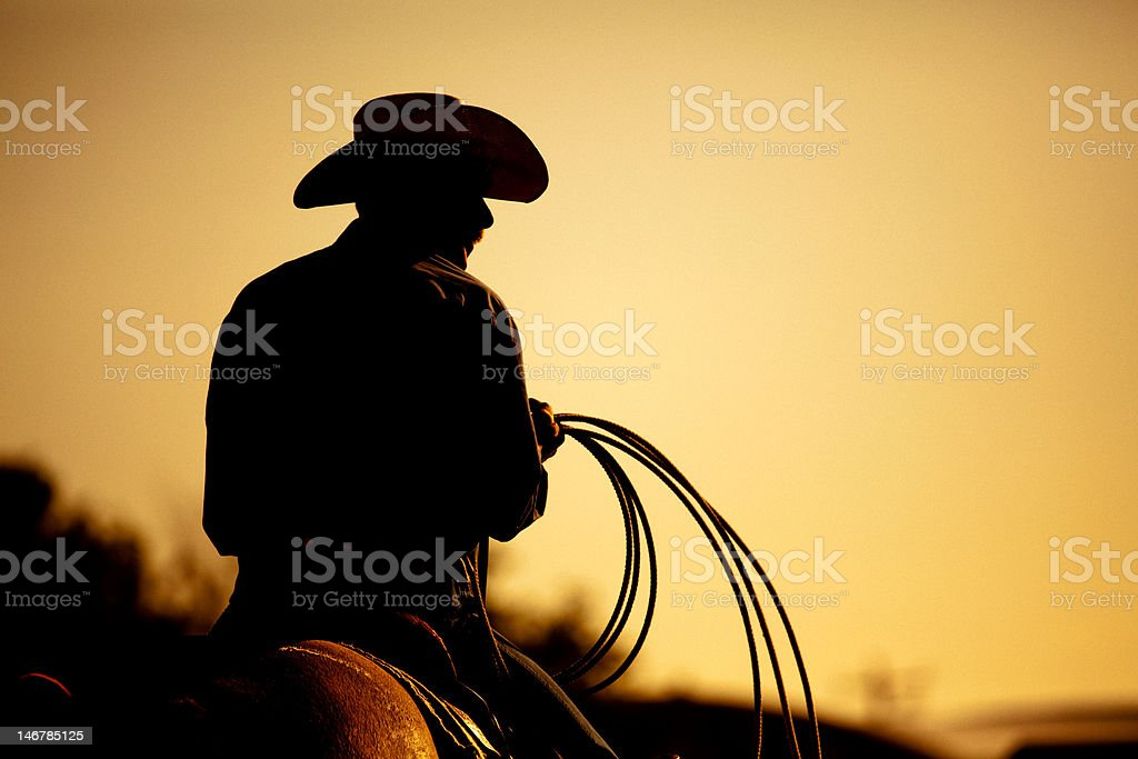 rodeo cowboy silhouette stock photo