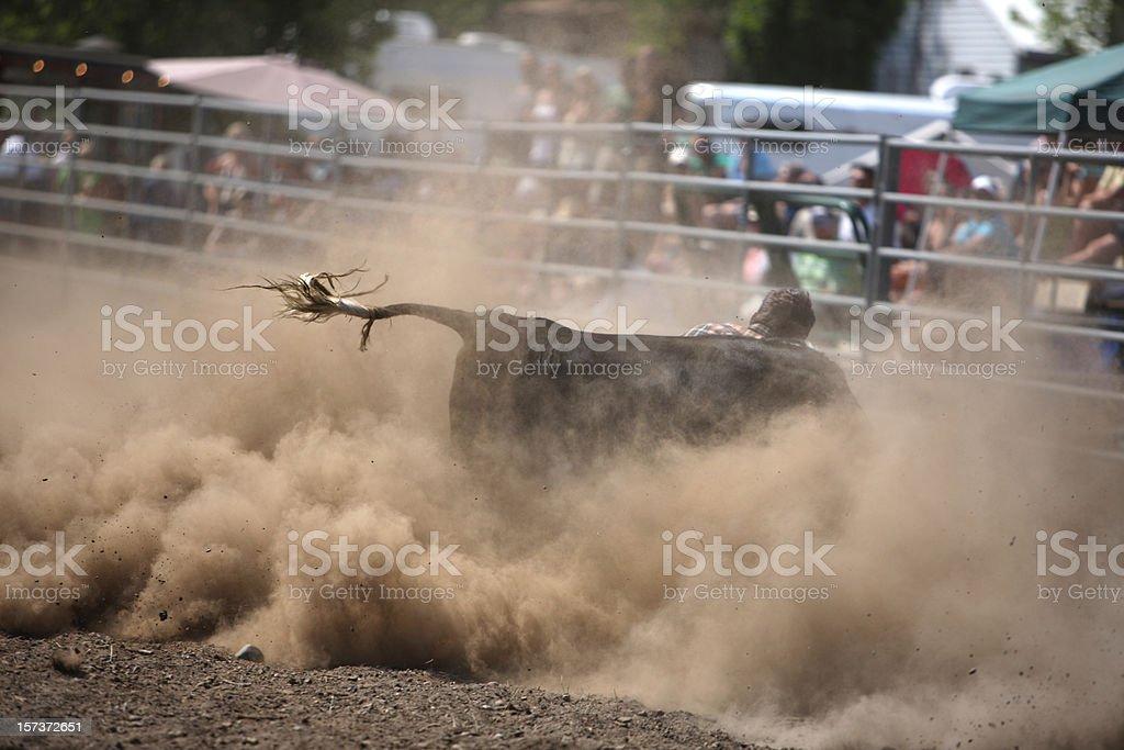 Rodeo Cowboy Steer Wrestler royalty-free stock photo