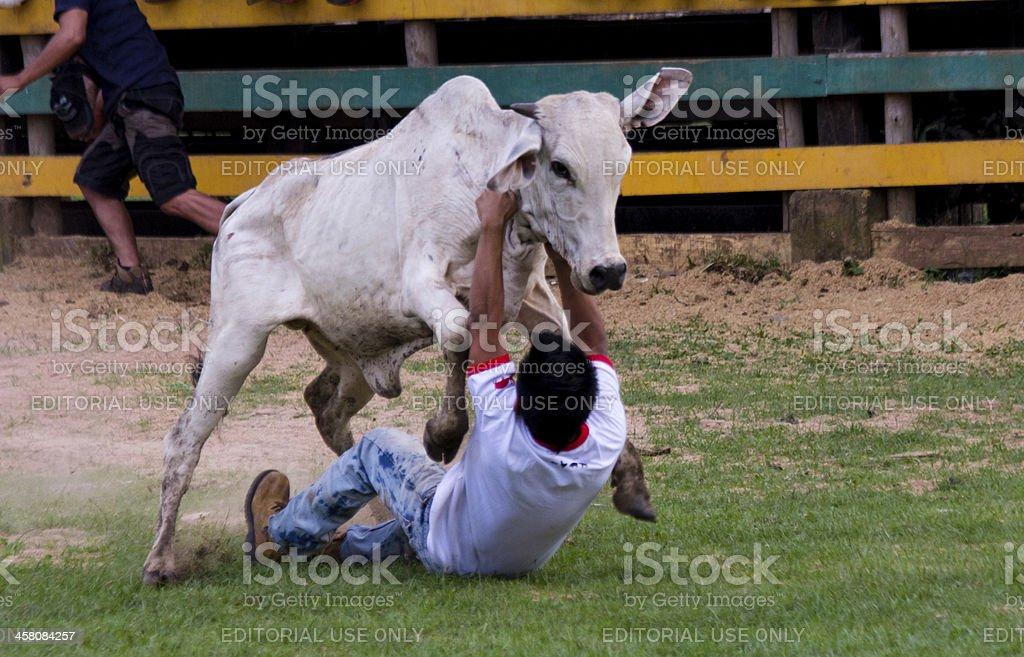 Rodeo festival stock photo