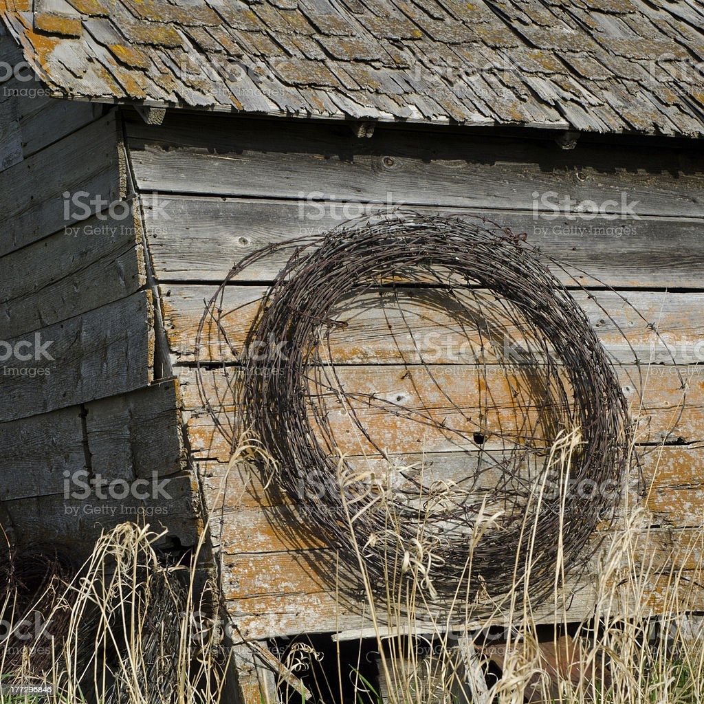 Roll of barbed wire hanging on an abandoned building royalty-free stock photo