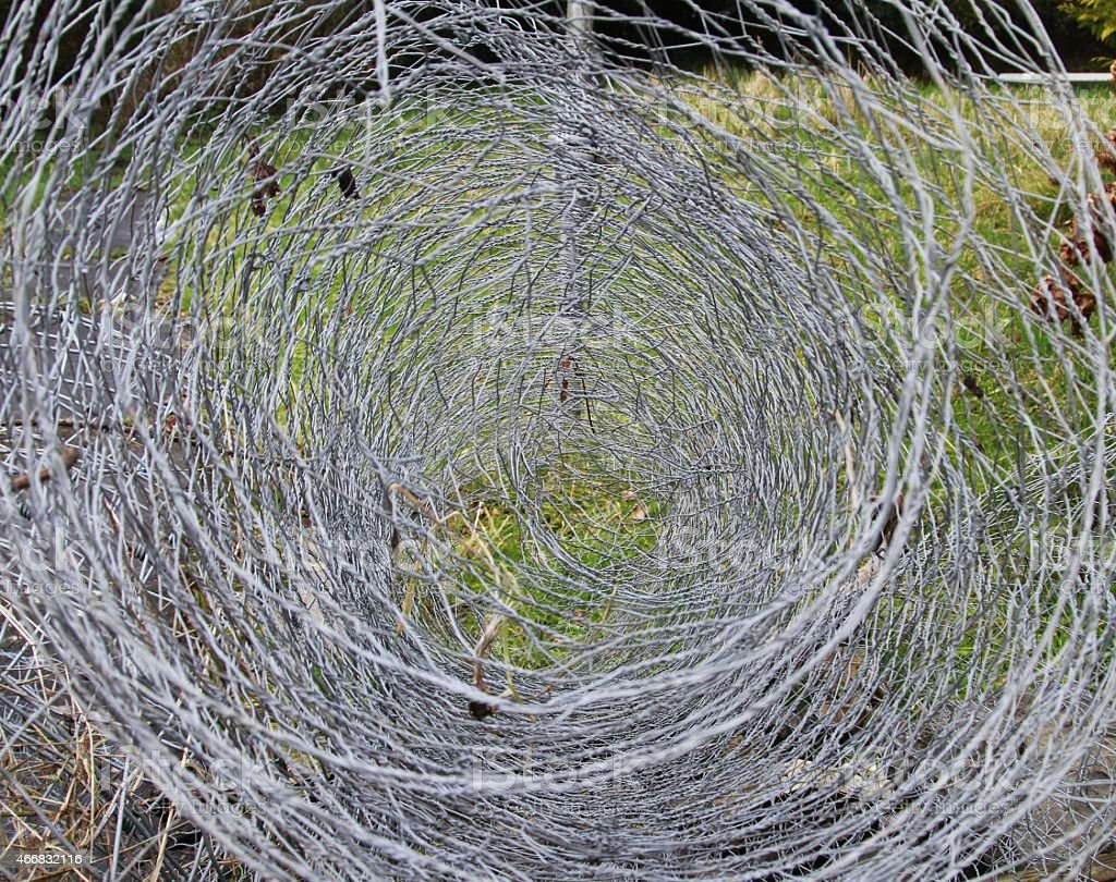 roll of chicken wire stock photo