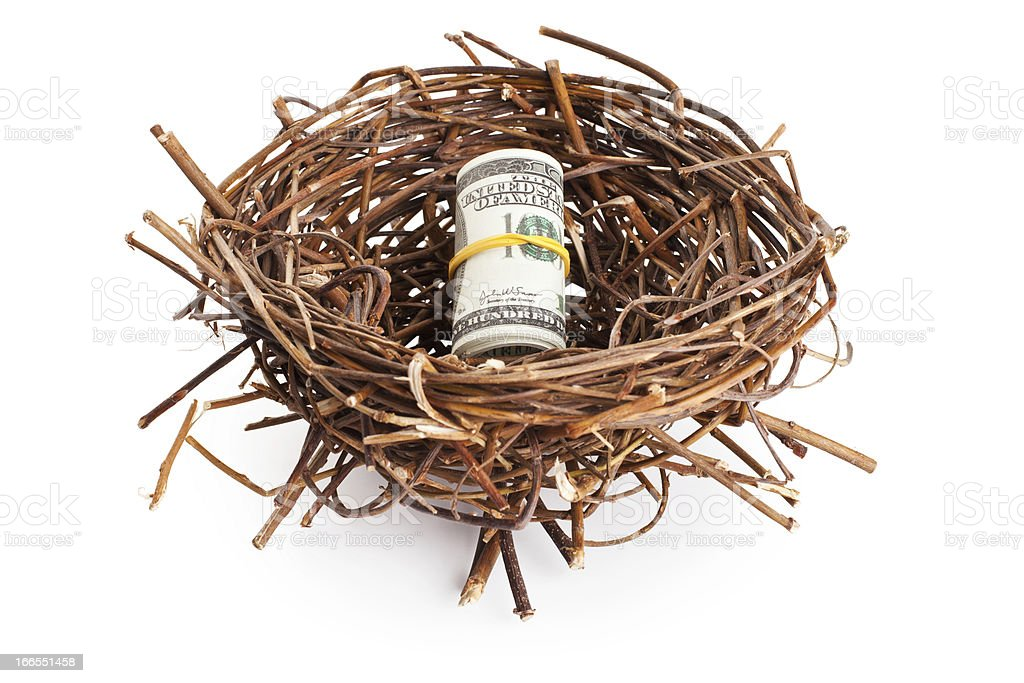 Roll of dollar bills in birds nest isolated on white royalty-free stock photo