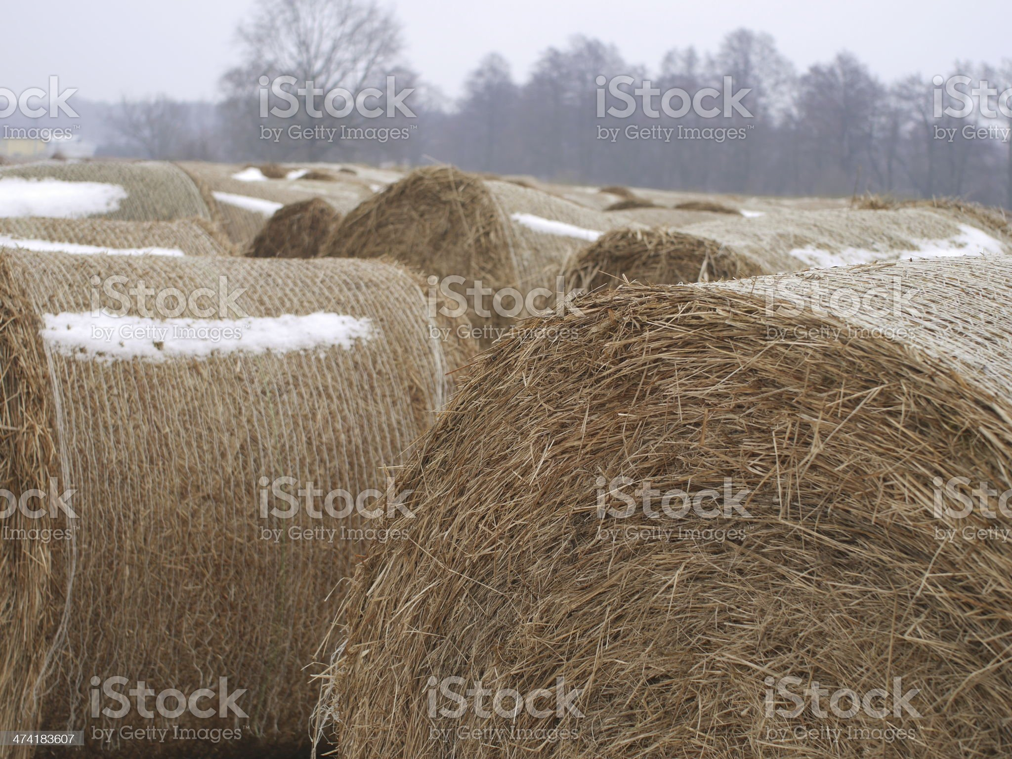 roll of hay royalty-free stock photo