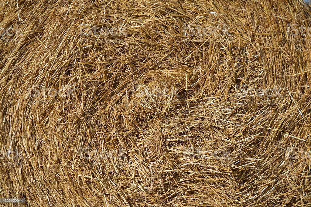 Roll of straw royalty-free stock photo