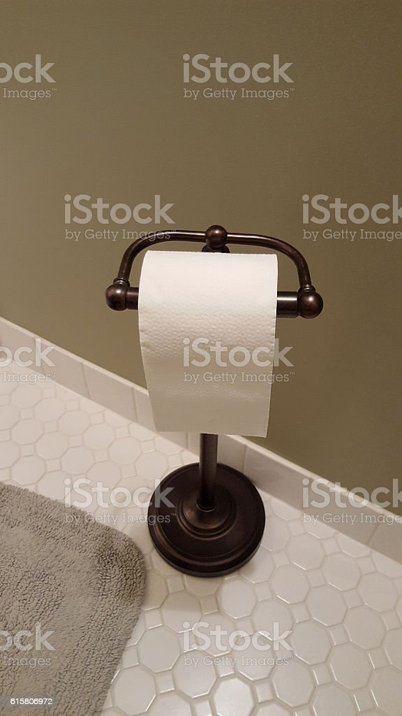 Roll Of Toilet Paper On Free Standing Home Dispenser stock photo