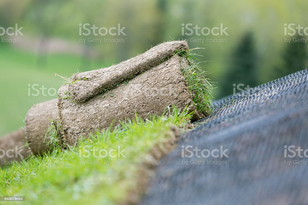 Rolled green grass installation stock photo