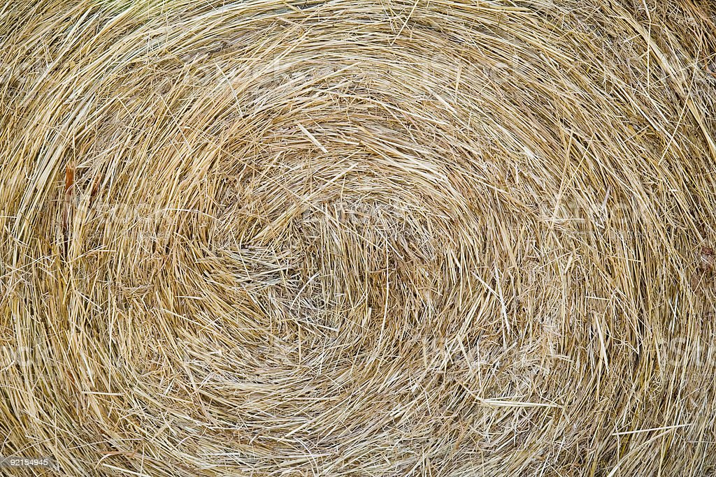 Rolled Hay stock photo