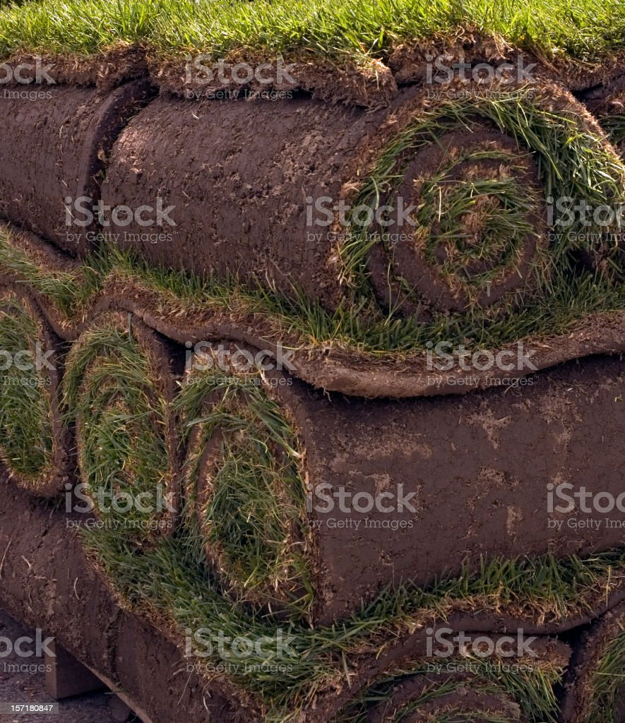 Rolled Sod Ready for a New Lawn royalty-free stock photo