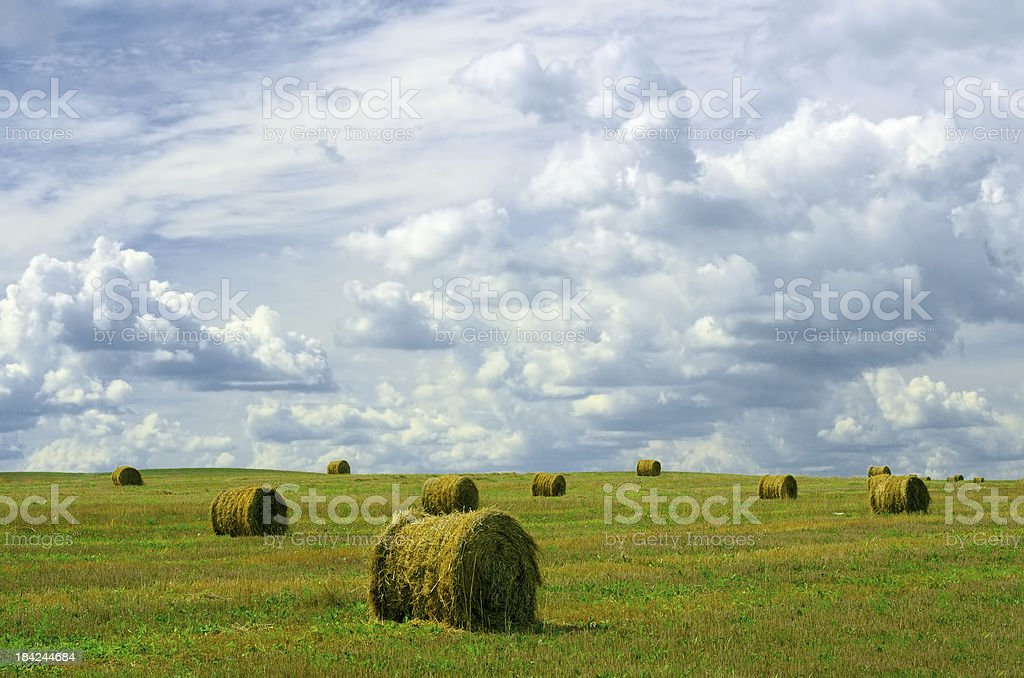 Rolled straw royalty-free stock photo