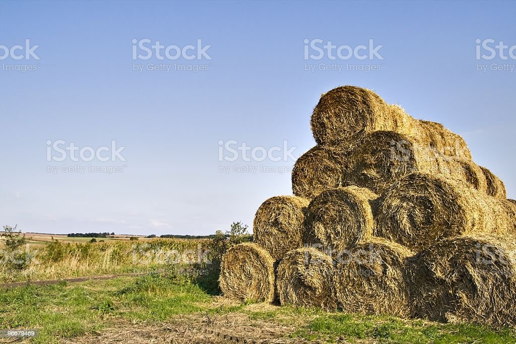 Rolled straw stock photo