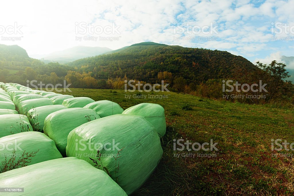 Rolled up bails in landscape royalty-free stock photo