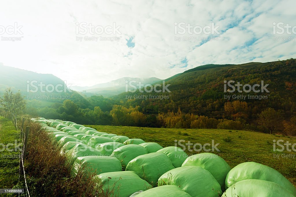Rolled up bails royalty-free stock photo