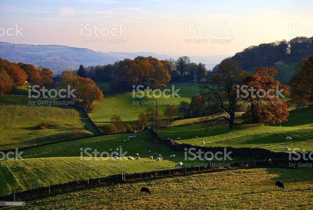 Rolling English countryside in Autumn royalty-free stock photo