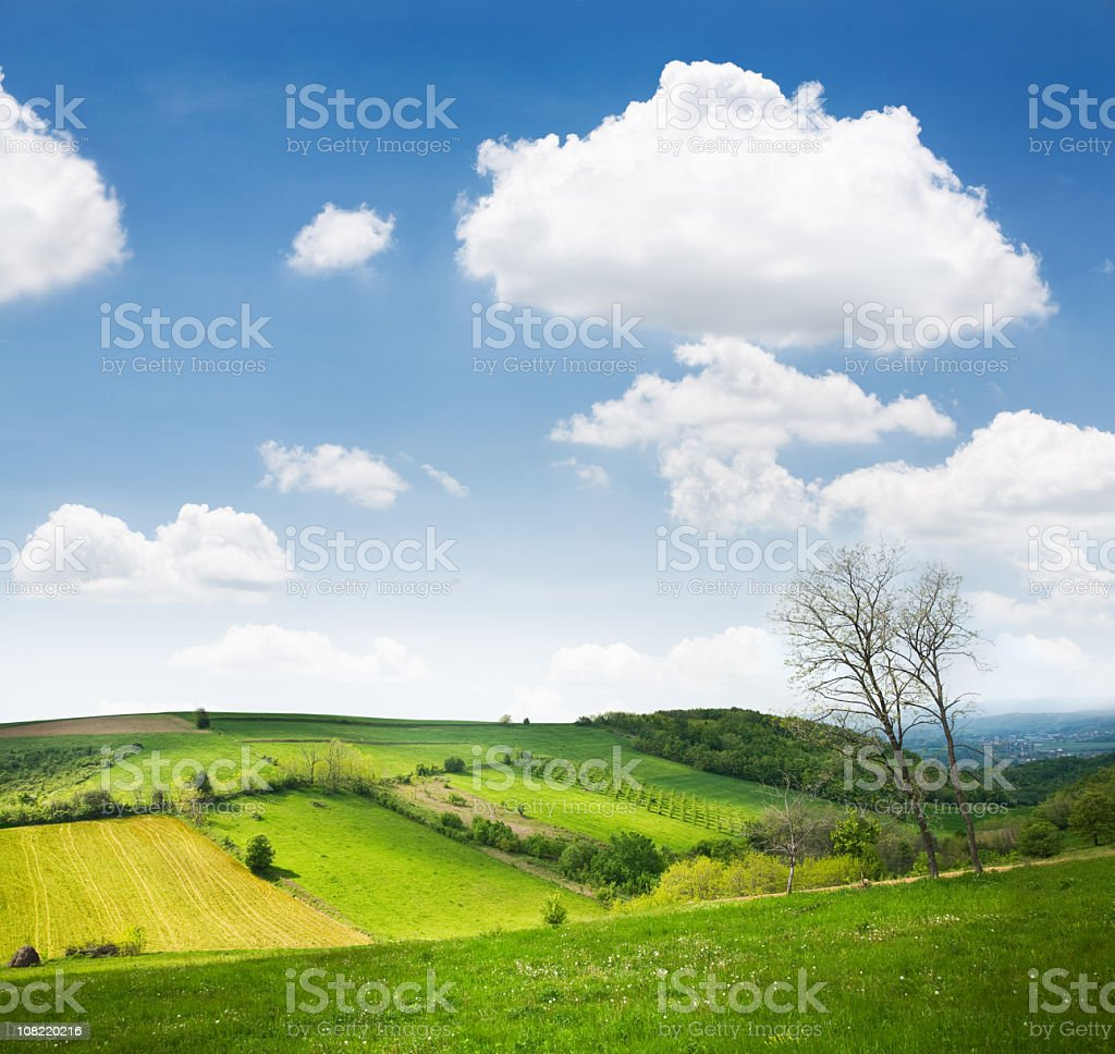 Rolling Farm Hills on Sunny Day royalty-free stock photo