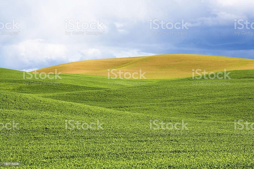 Rolling Farmland stock photo