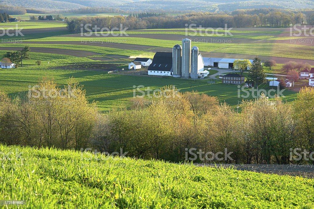 rolling farmlands royalty-free stock photo