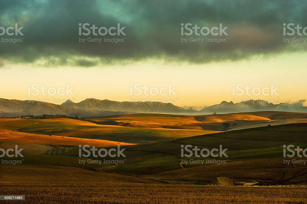 Rolling farmlands. Western Cape Province. South Africa stock photo