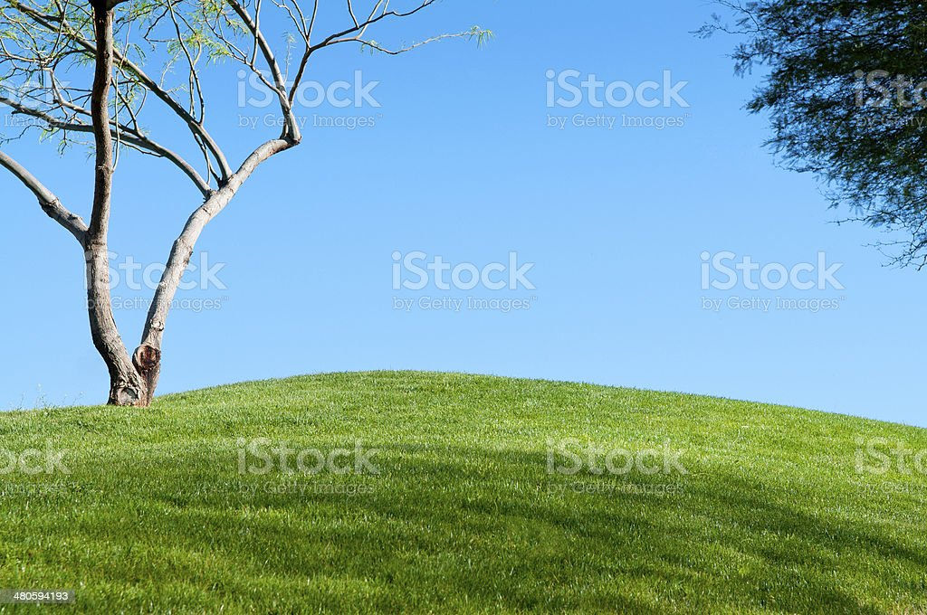 Rolling Grass Hills royalty-free stock photo