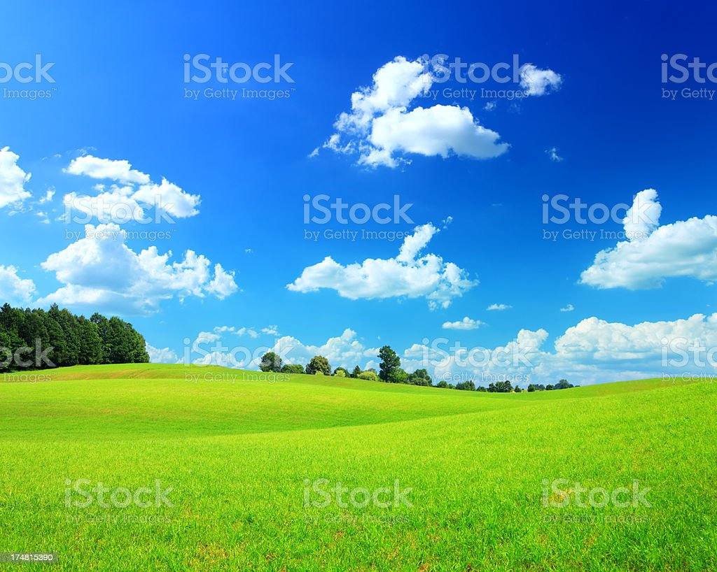 Rolling Grassy Meadow - Green and Blue Spring Landscape royalty-free stock photo