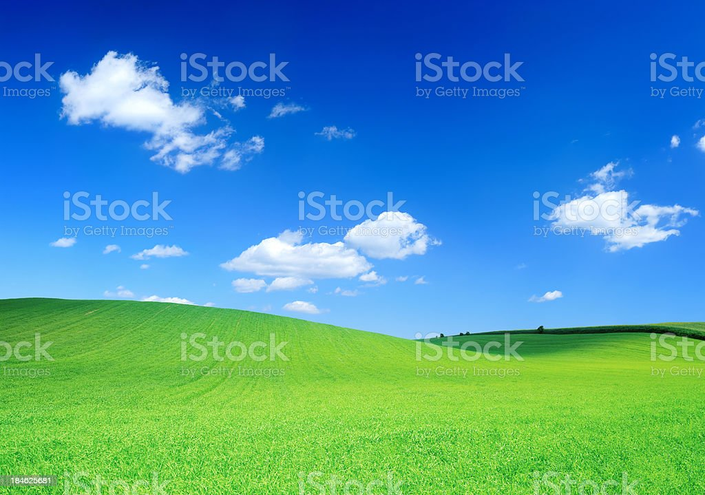 Rolling Green Field and Blue Sky - Spring Landscape royalty-free stock photo