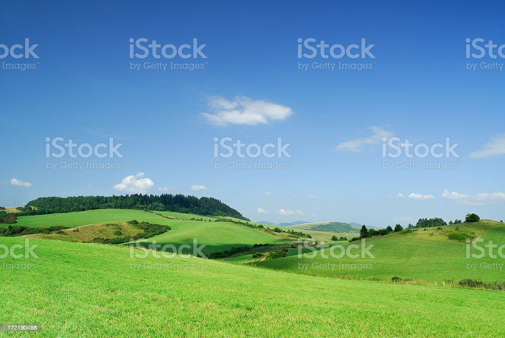 Rolling green fields under blue sky royalty-free stock photo