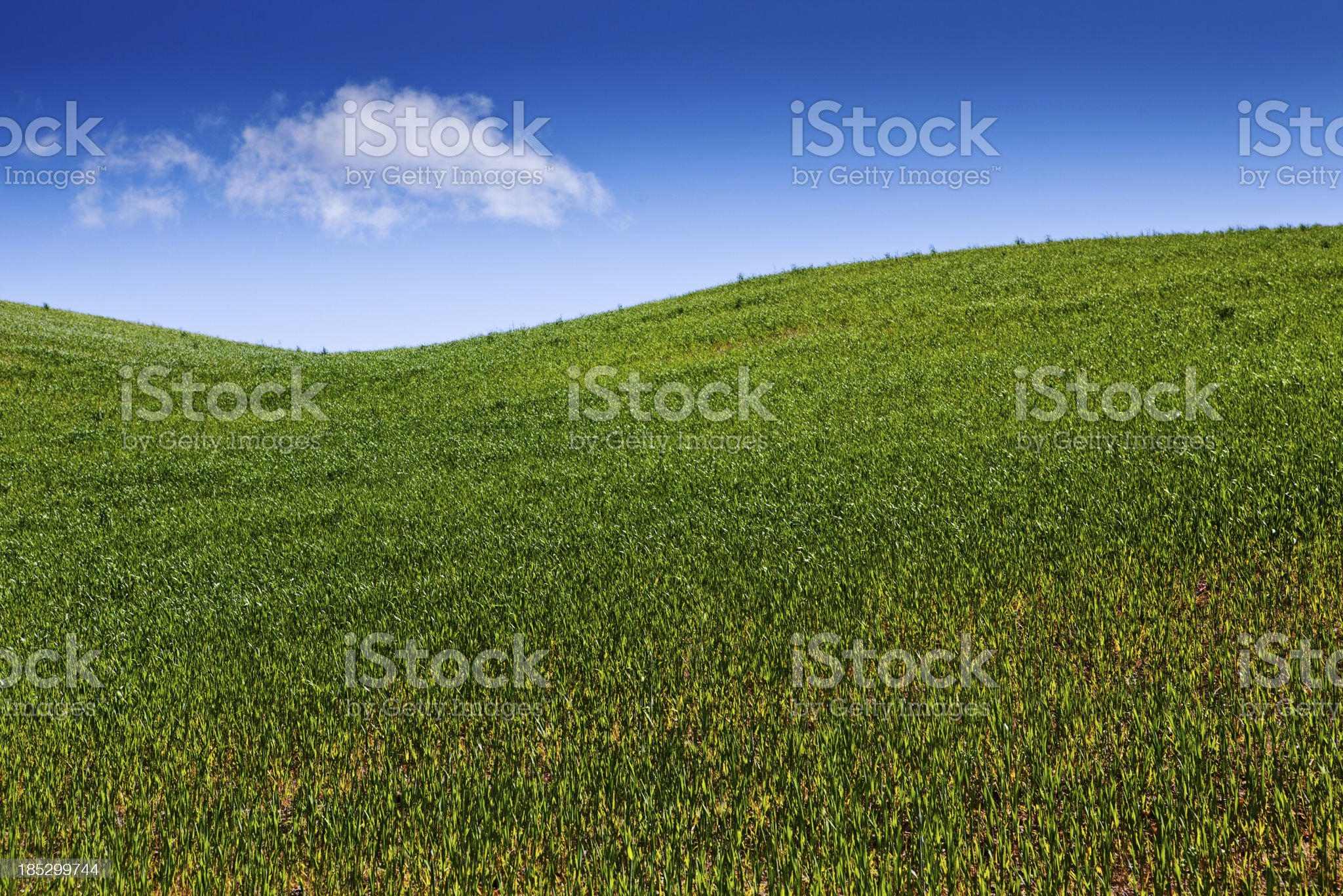 Rolling green hills royalty-free stock photo
