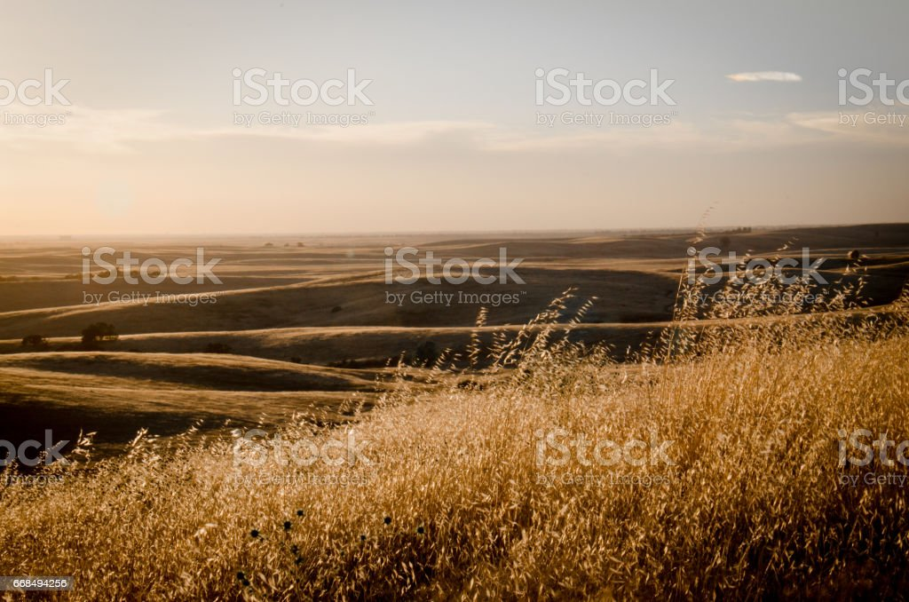 rolling hill grasslands stock photo