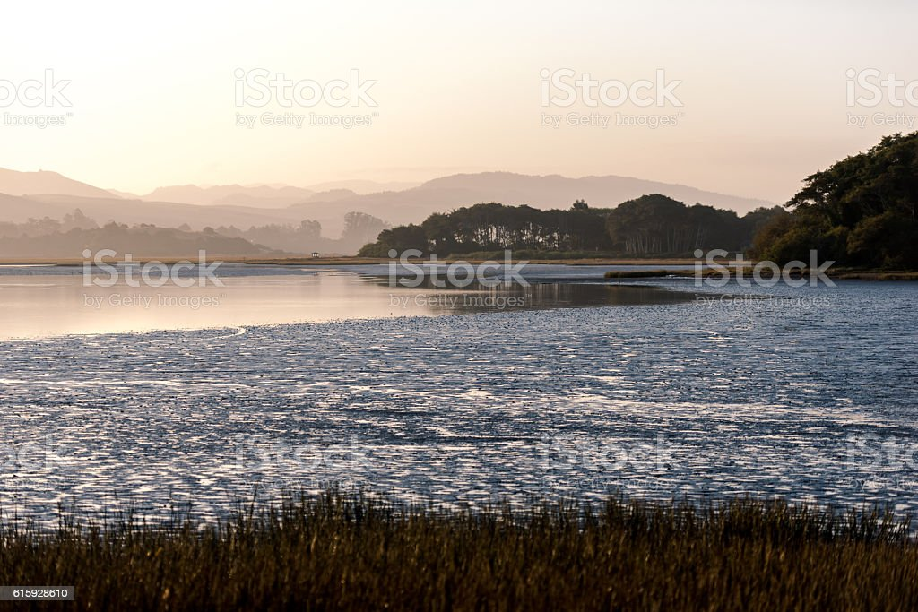 Rolling hills and fog at Tomales Bay, California stock photo