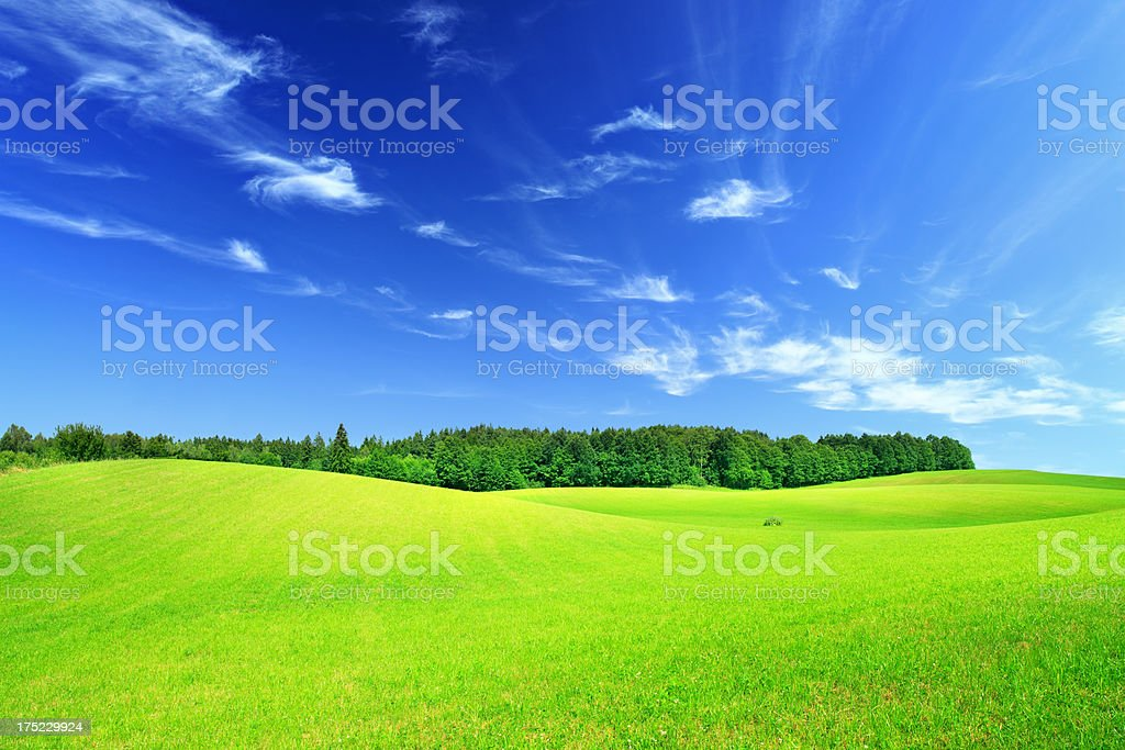 Rolling Hills and Valleys - Green Landscape Meadow royalty-free stock photo
