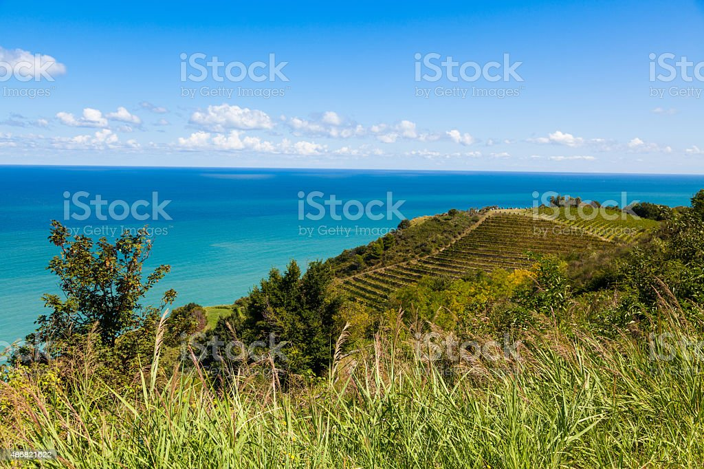 Rolling hills and vineyards over the Mediterranean Sea stock photo