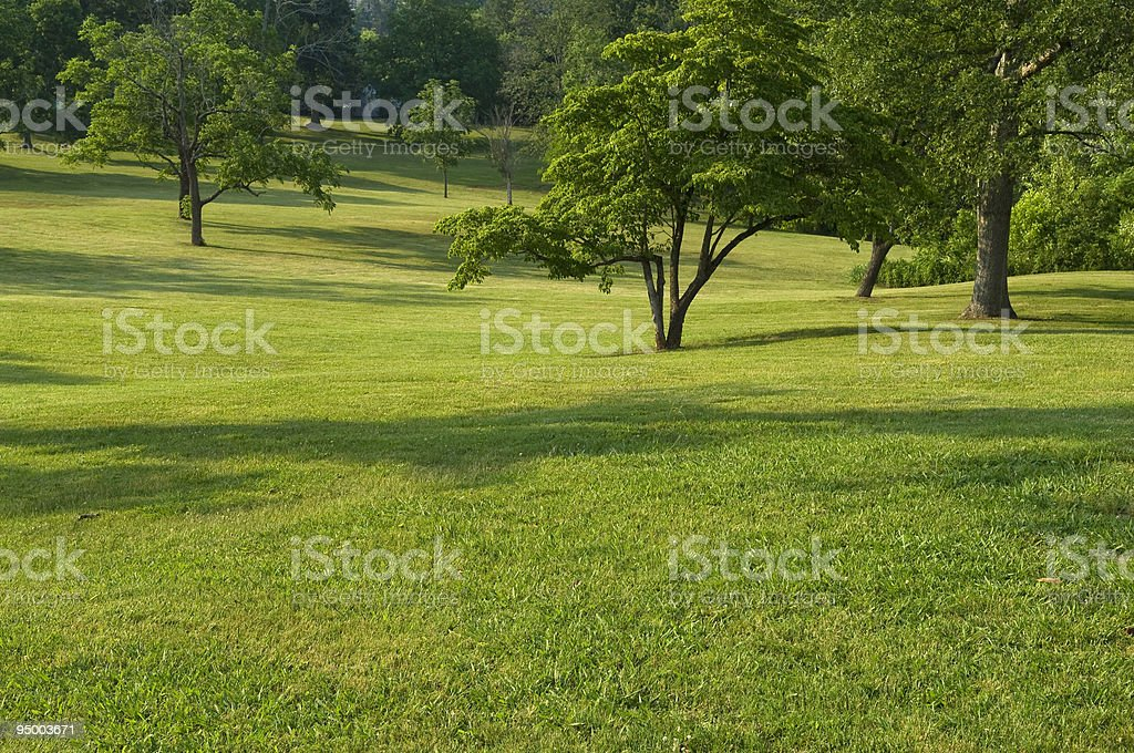 Rolling Hills of Green Grass with Trees stock photo
