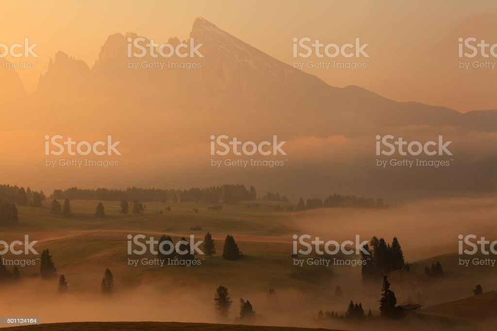 Rolling Hills with Fog at dawn, Alpe di Siusi, Dolomiti. stock photo