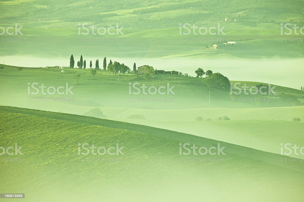 Rolling Landscape with Cypresses And Morning Mist, Tuscany, Italy royalty-free stock photo